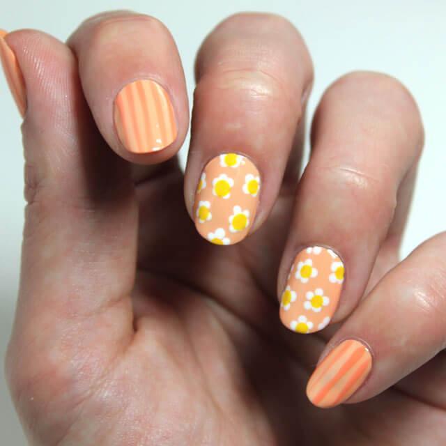quelques faciles décorées de fleurs oranges